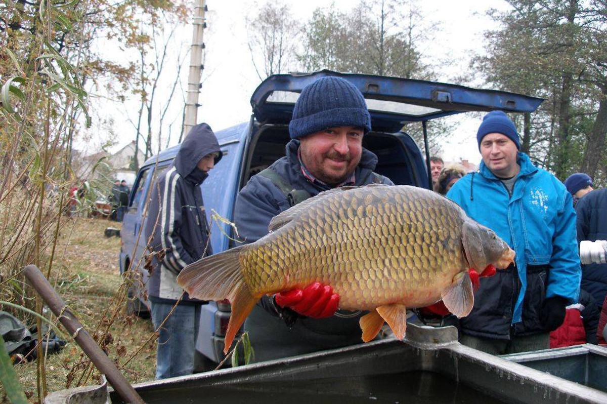 (Ne)tradiční výlov Mitrovického rybníku – 21.11.2020