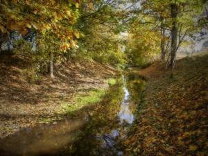 Podzimní Ščučí