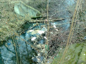Šídlovec - potok