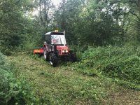 V přírodním parku Hrabovjanka firma vtěchto dnech montuje vrbový altán