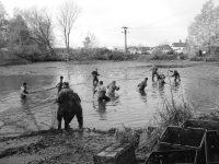 Tradiční výlov Mitrovického rybníku – 4.11.2017