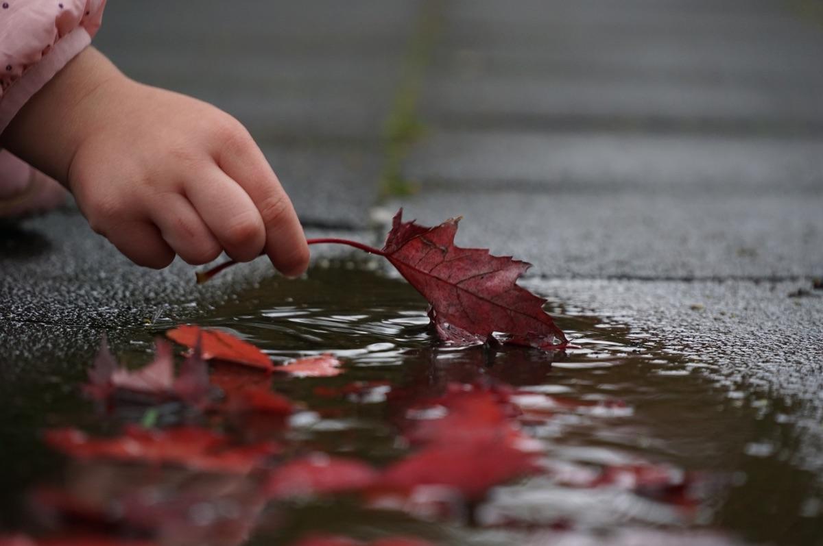 Báseň: Věra Kročková – Podzim