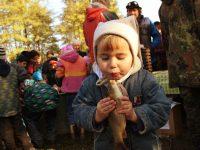 Ryby zMitrovického rybníku naplnily rybářské sítě