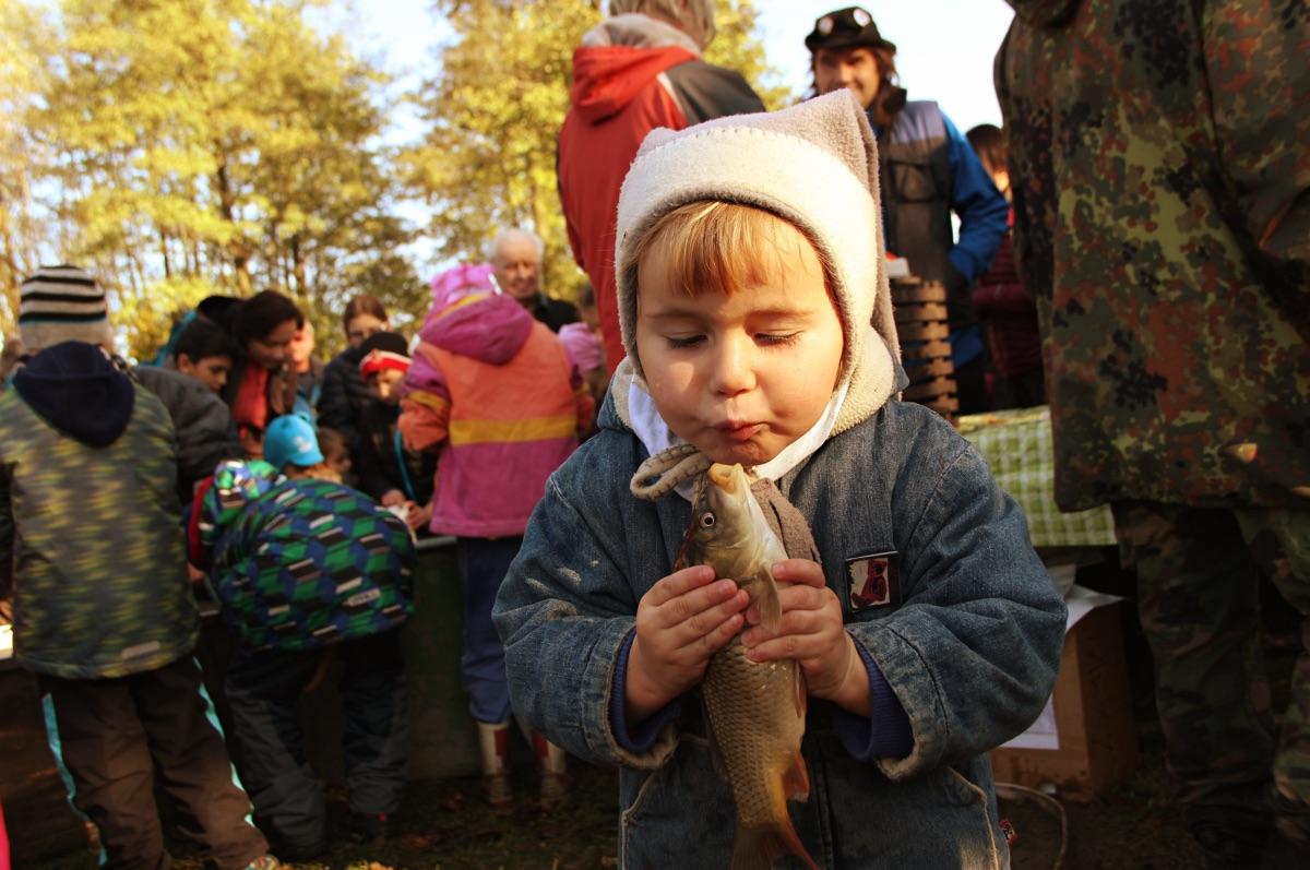Tradiční výlov Mitrovického rybníku – 9.11.2019