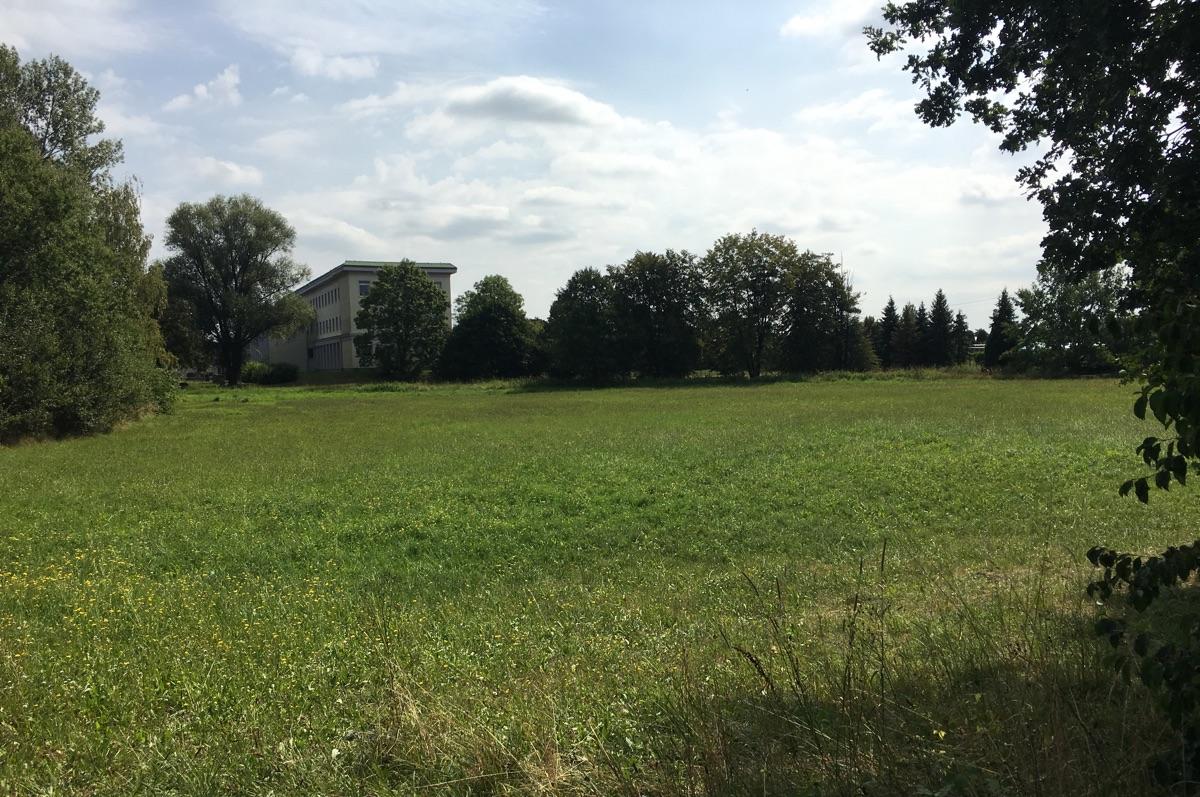 Co vyroste na pozemku vedle školy?