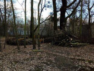 Zelená Hrabová: Příčina opakovaného znečištění potoku Zyf
