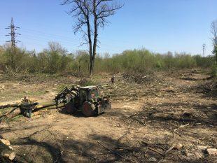 (FOTO) Vykácený lesík bude do dvou let znovu zalesněn