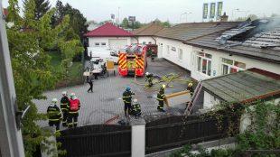Městská policie: Někdo se líbal pod třešní, strážníci pomáhali upožárů