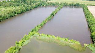 (VIDEO) Hrabovské rybníky Pilíky