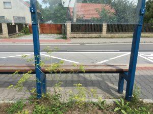 Zastávka Bělská
