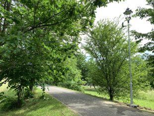 (FOTO) Máme nové veřejné osvětlení na ulici před kostelem