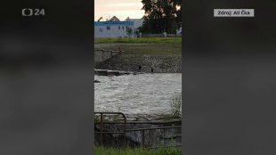 (VIDEO) ČT24: Děti si hrály usplavu rozbouřené řeky vOstravě-Hrabové
