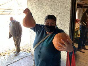 (FOTO) Komise pro děti amládež rozdala občanům vypěstované dýně
