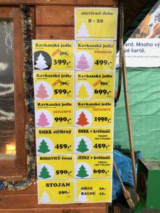 Aktuální nabídka/ceník vánočních stromků