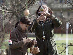 (FOTO) Hrabovské vajcovníky