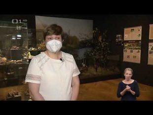 (VIDEO) Česká televize: Výstava oostravských parcích